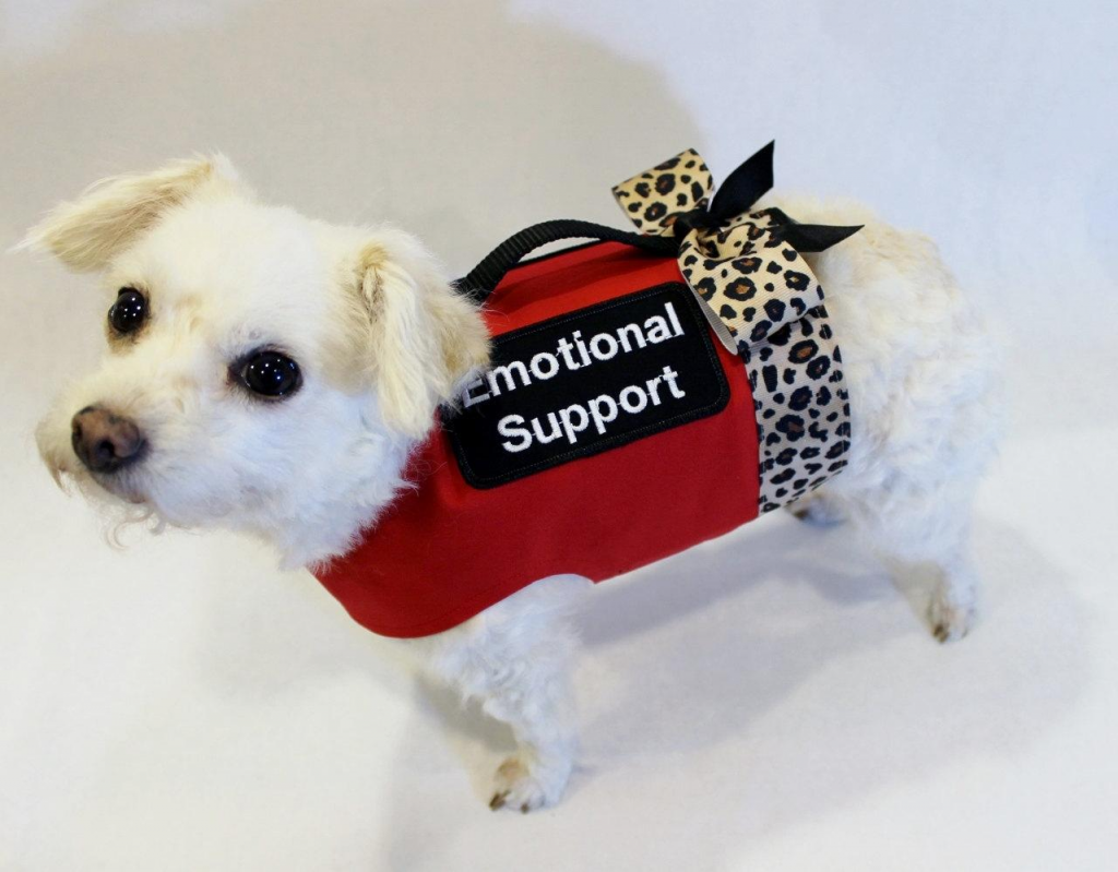 Emotional Support Dog