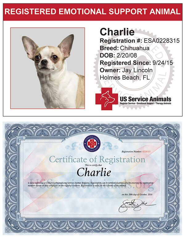 Emotional Support Animal ID And Certificate