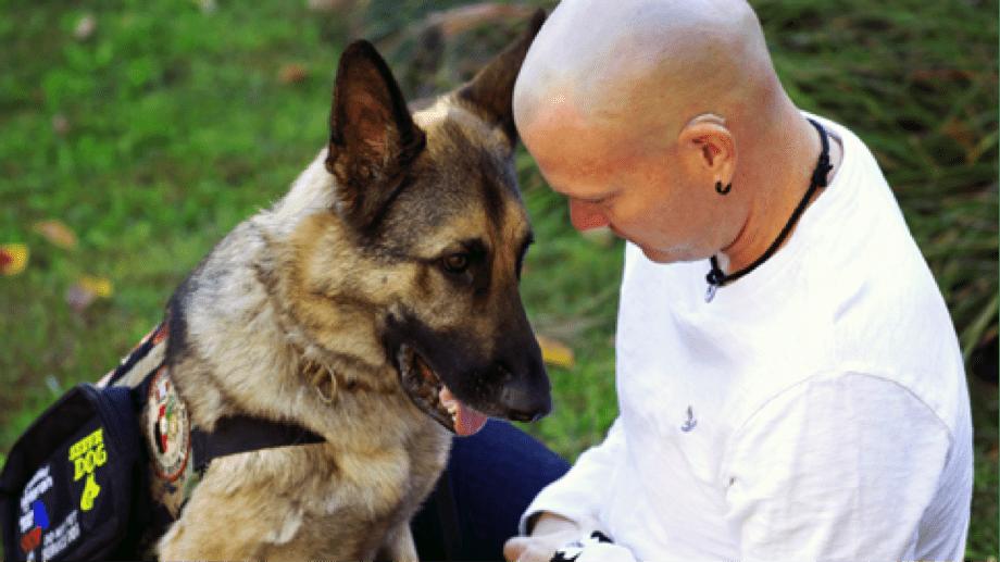 Service Dog Helping A Veteran