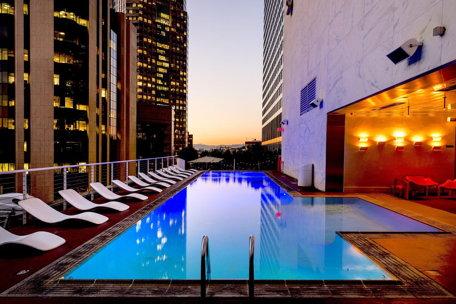 Pet-Friendly Hotels in Los Angeles