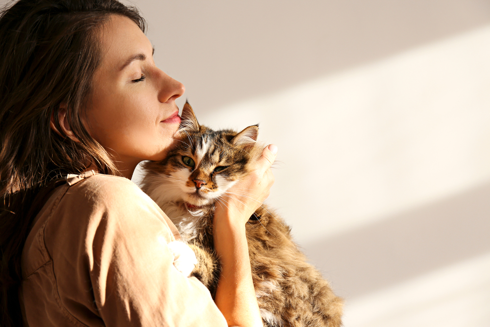 woman with Siberian cat
