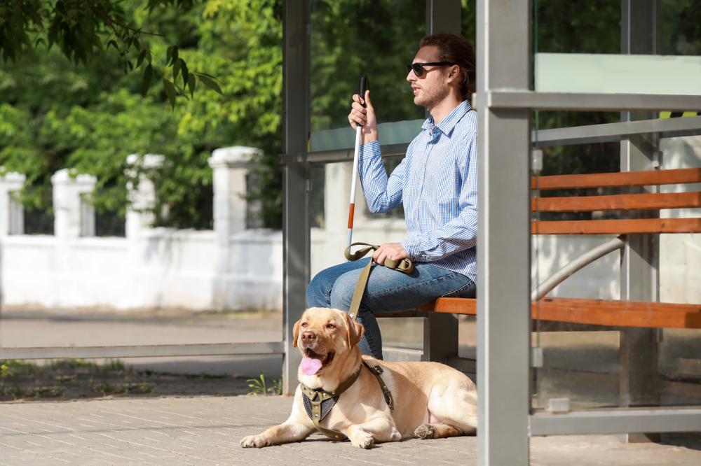 sitting blind man with service dog
