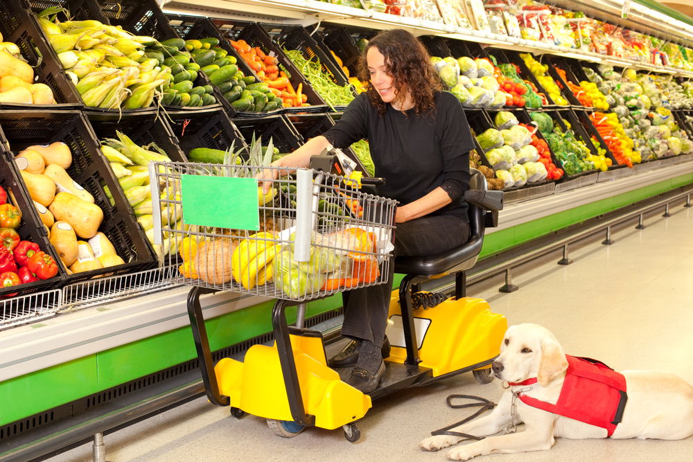 woman in wheelchair at store with service dog